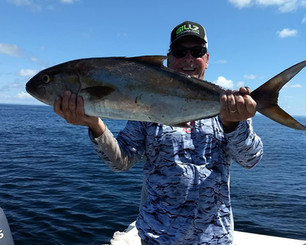 fish amberjack.jpg