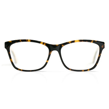 Wayfarer Glasses