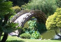 Garden 10.jpeg