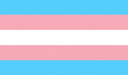 Trans Flag.png