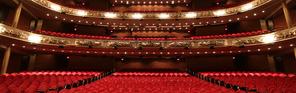 Walterdayle Theatre 18 - Princess of Wales Theatre.webp