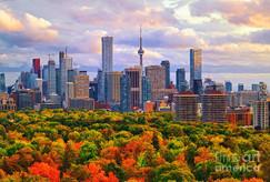 Toronto 1.jpeg