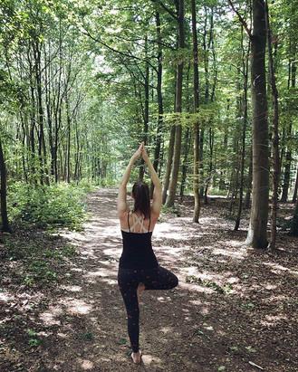 🌲 Baum - Wald-Edition #afteryogawalk_._