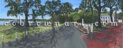 Bluff Drive