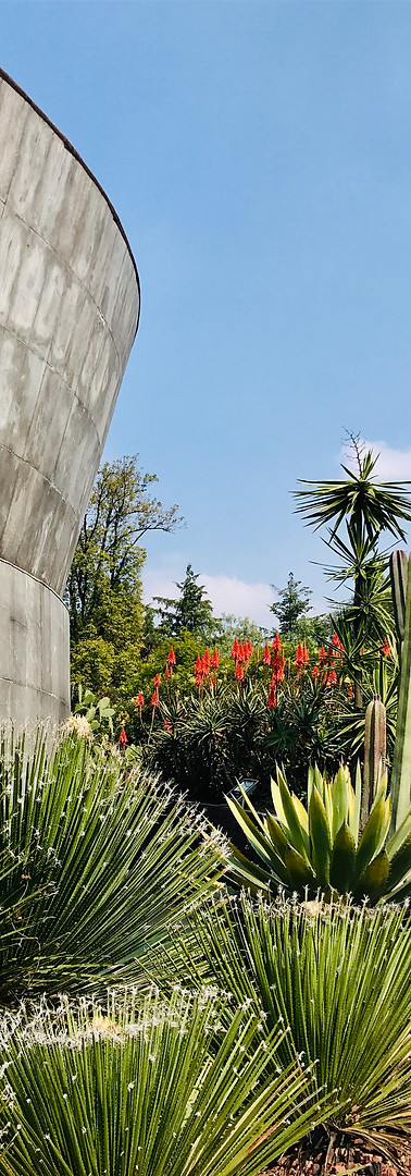 Chapultepec, Mexico City, Mexico