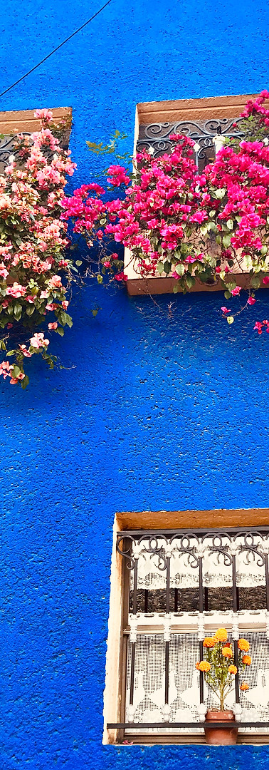 Colorful house in San Angel, Mexico
