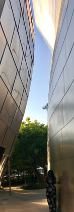 Walt Disney Concert Hall - Los Angeles, USA