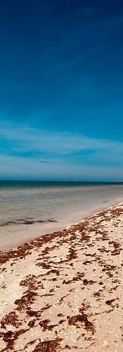 Sisal Beach, Mexico