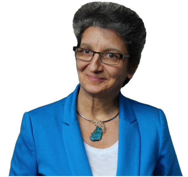 Author Gabriela Casineanu