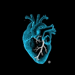 aDayInTheLife Blue Heart Logo.png
