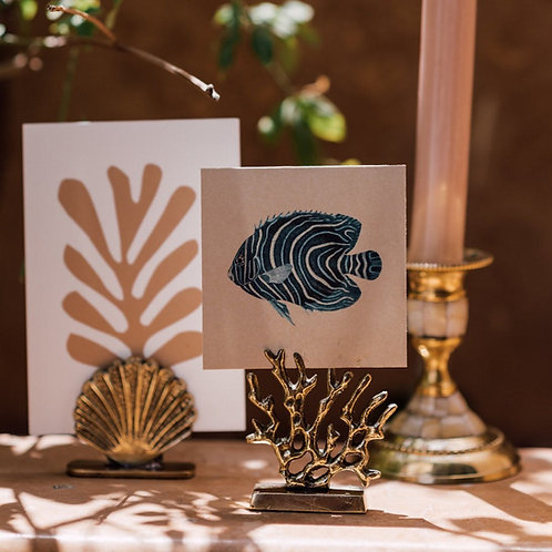 Coral card holder