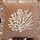 Thumbnail: Velvet cushion coral