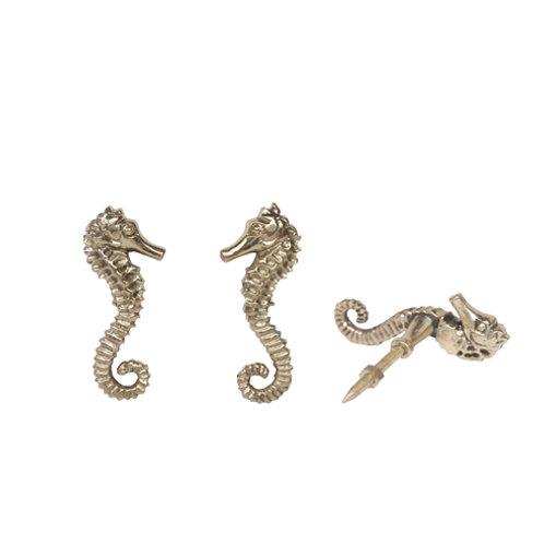 Knopje Seahorse