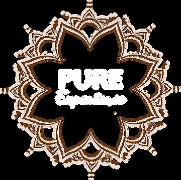 logo PURE EXPERIENCE transparent - Copie