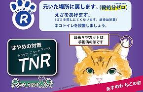 町会掲示板用、のら猫、A4_006_入稿準備006.jpg