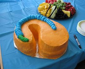 Jamie's cake!!!.JPG