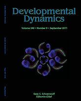 DevDyn2011.jpg