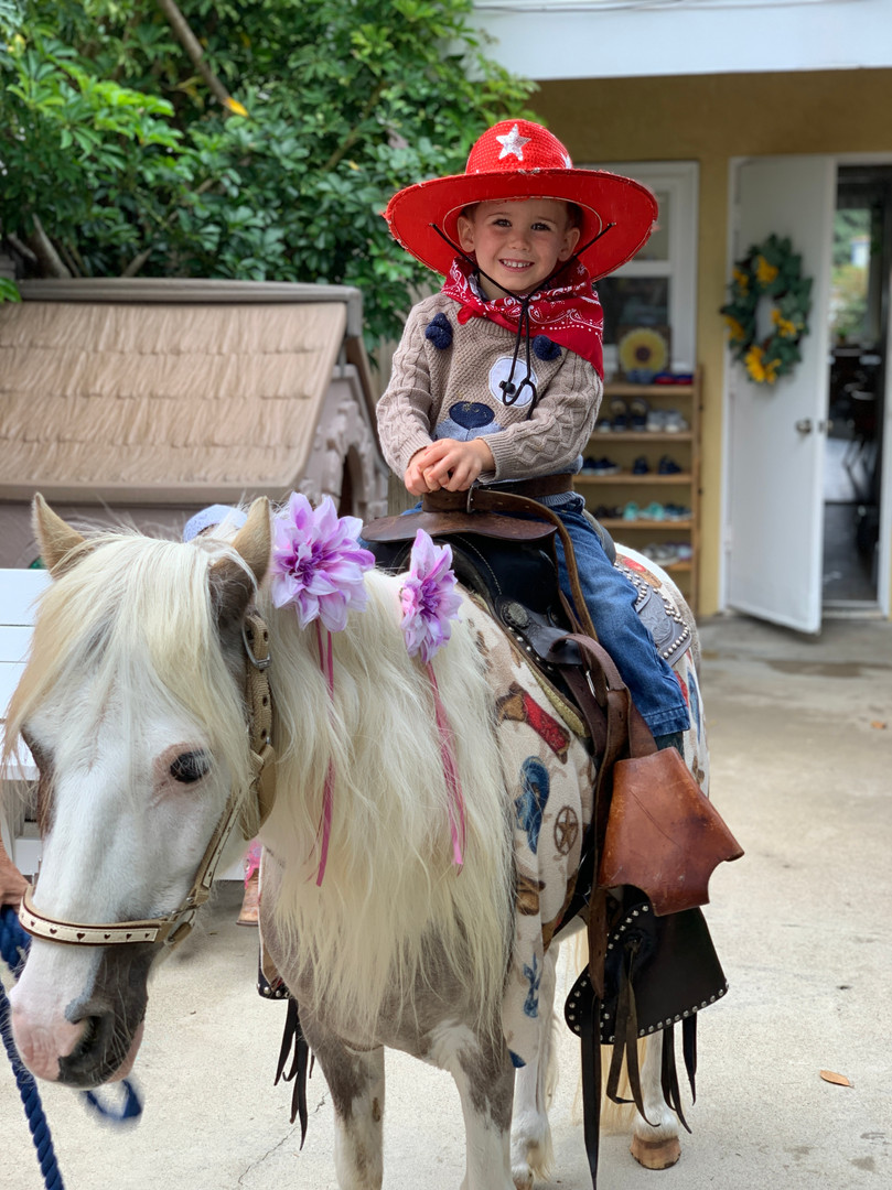 Cowboys and Cowgirls in the Wild West