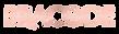 Bracode logo v3.png
