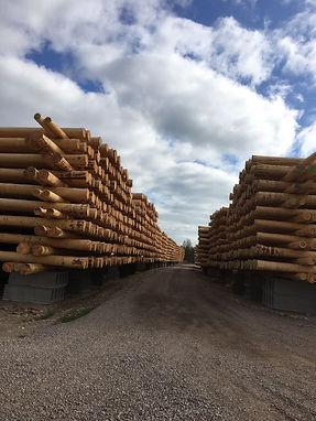 Wooden Poles from Bin Salim