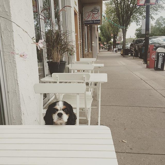 Table for one, pls