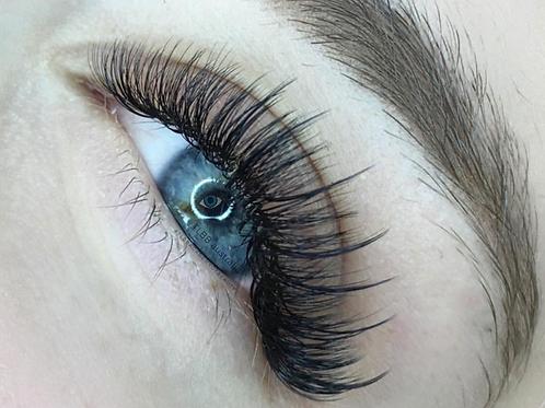Volume Eyelash Extensions (Natural)