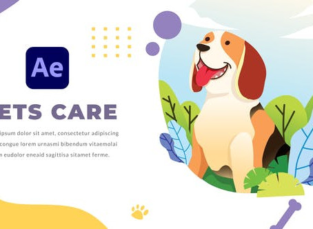 VIDEOHIVE PETS CARE AND VETERINARIAN | AFTER EFFECTS