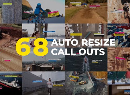 VIDEOHIVE AUTO RESIZING CALL-OUTS