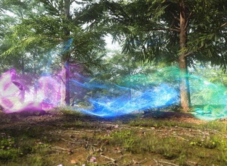 VIDEOHIVE NATURE MAGICAL BUTTERFLIES REVEAL