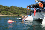 Sydney Boat Adventures - Swimming
