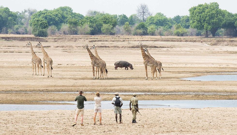 Safaris%20a%20pie%20en%20Kaingu%2C%20Zam