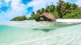 Buceo en Seychelles