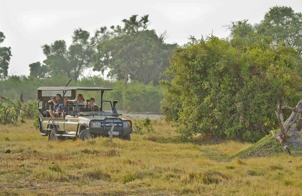 Safari en familia en Botswana