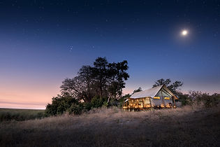 Linyanti Bush Camp, Botswana