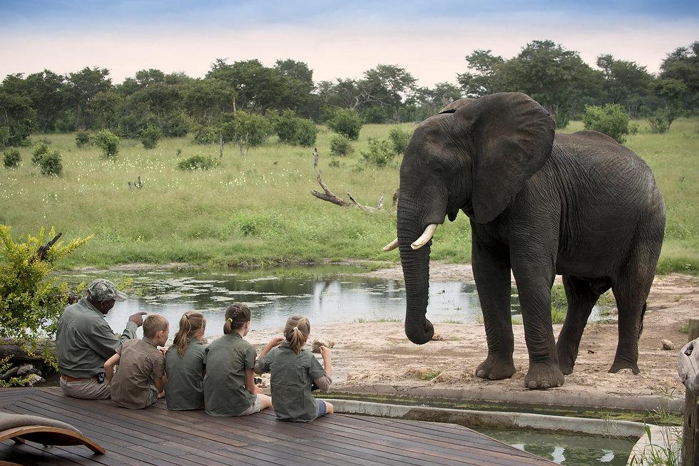 Safari con niños en Somalisa, Zimbabwe
