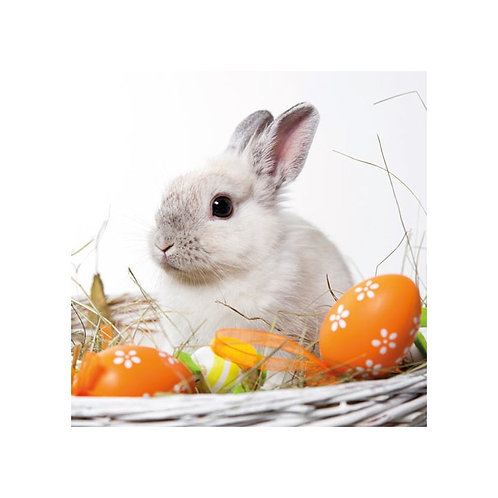 "Servietter - ""Bunny"" (20 stk.)"