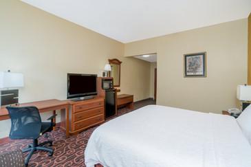 Hamilton Inn Bessemer Bedroom