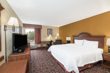Hamilton Inn Bessemer Hotel Room