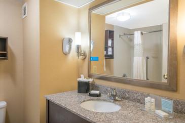 Hamilton Inn Bessemer Washroom