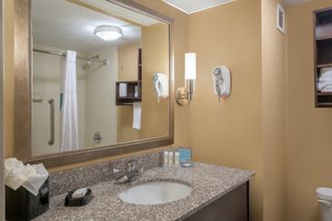 Hamilton Inn Bessemer Hotel Washroom