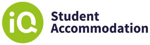 IQ Student Logo Lightbulb Moment client