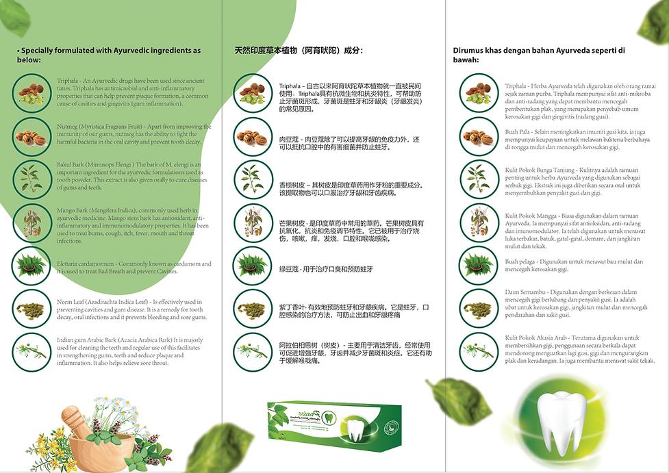 Toothpaste leaflet-2.png