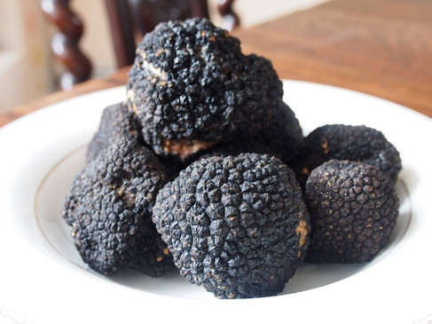 Delicacy Perigord Truffle