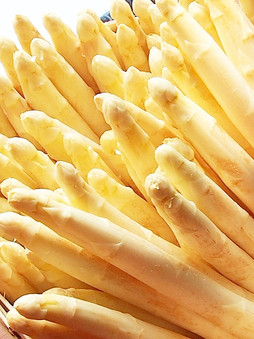 French White Asparagus