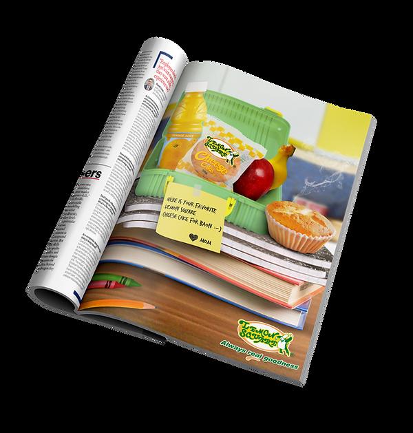 lemonsquare magazine ad.png