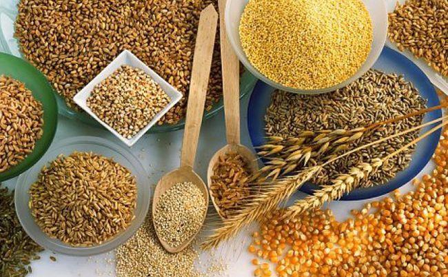 Vitamina B1: proprietà, a cosa serve e in quali alimenti si trova