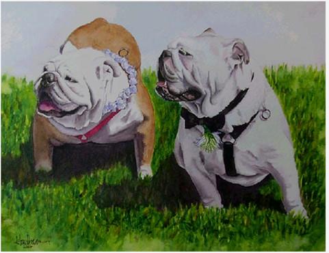 Bulldog Wedding- the Ringbearers