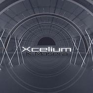 Xcelium.jpg