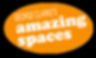 George Clarke's Amazing Spaces Logo