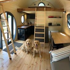 The Pups in The Mezzanine Pod